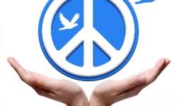 peace_pomba azul